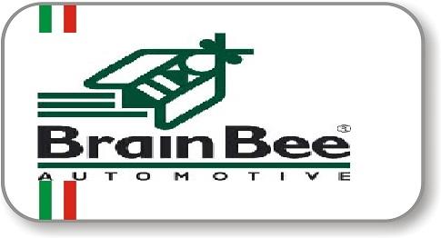 Collegamento a Brain Bee