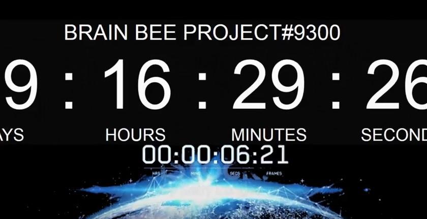 L'ATTESA | Brain Bee lancia un video particolare: novità a Primavera 2017, arriva Project #9300